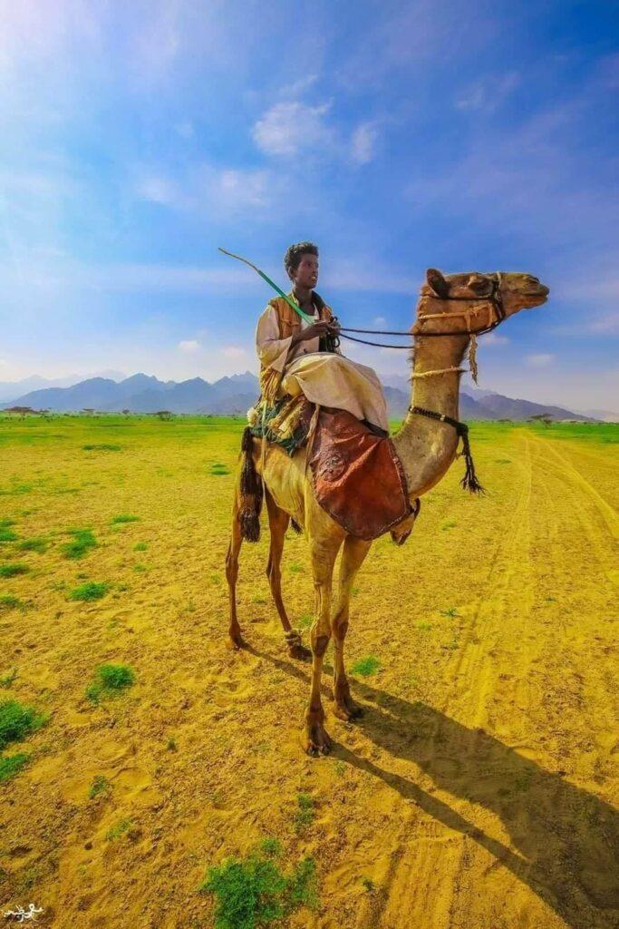السفر الي مثلث حلايب وشلاتين جنة الله في مصر